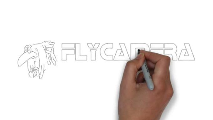 logo_flycamera