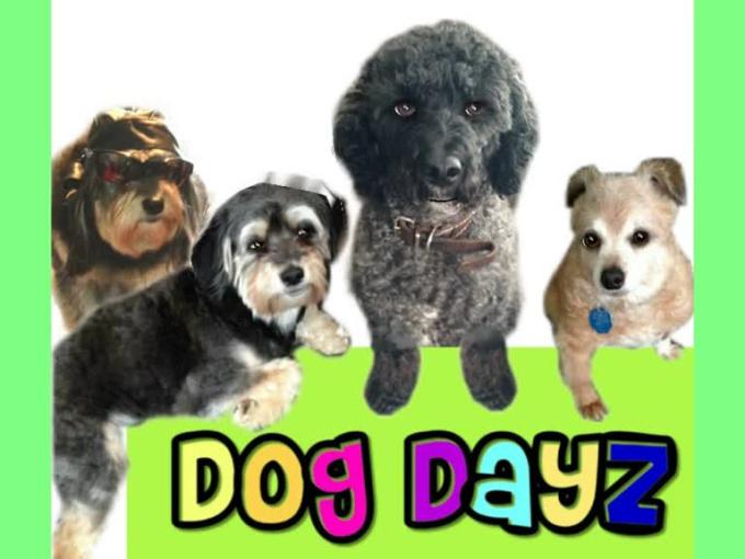 dog dayz WMV