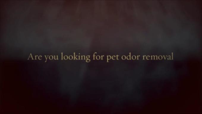 Pet_Odor_Removal_Boerne_Texa