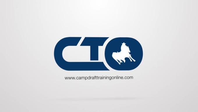 CTO Logo Animation Video Intro in Full HD