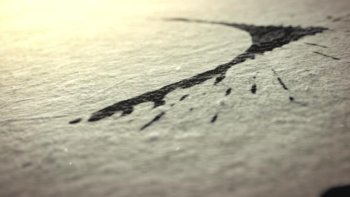 Marco Brotta Ink Reveal