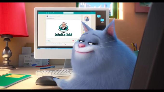 Pets balancecure 720p