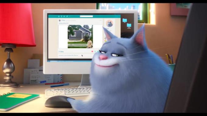 Pets Courtice Bungalow 720p