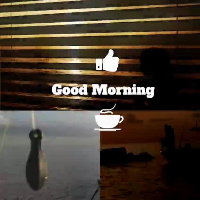largeles - good morning video - wildcard digital