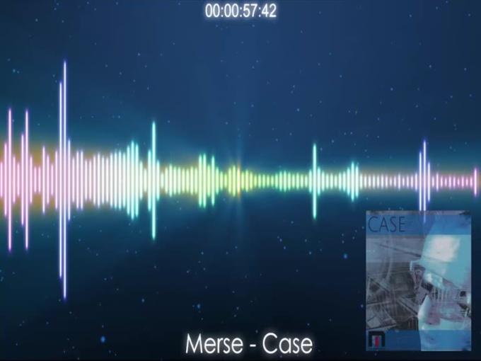 merse_case_2