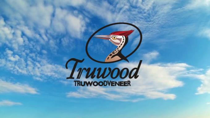 truwoods_jet logo reveal_full HD