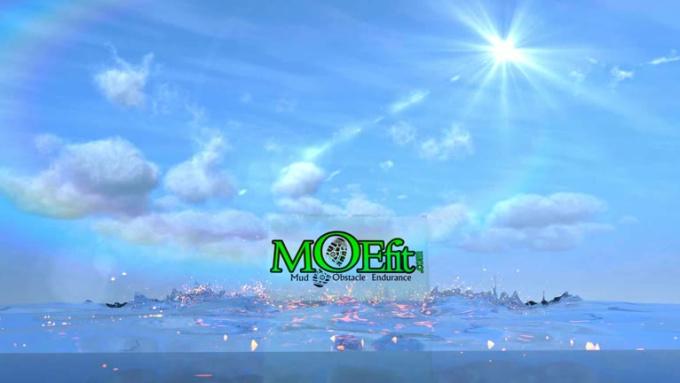MOEfit