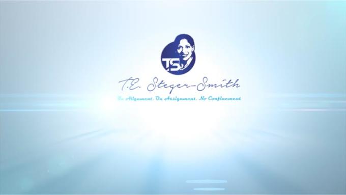 ! Clean Elegant Logo