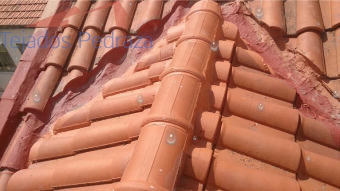 tejados pedraza logo