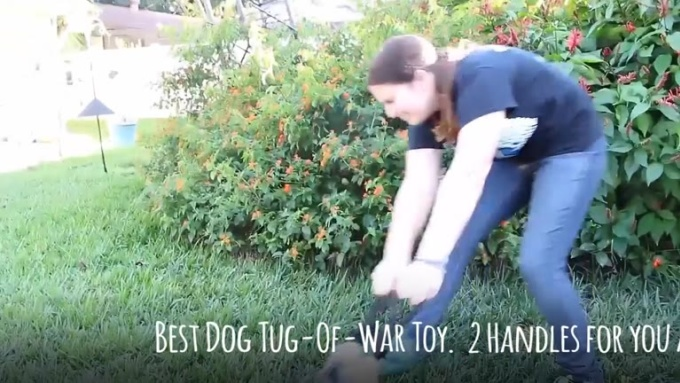 Tug of War Toy with text