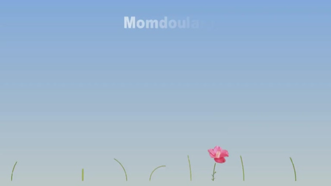 PROMO_FLOWER_PRESENTAION_momdoulary_Modified