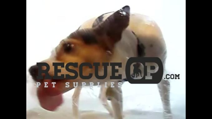 rescueop