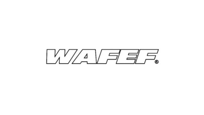 WAFEF Intro 2-1