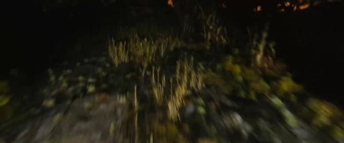 Weed Road