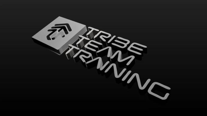 Tribe Team Logo