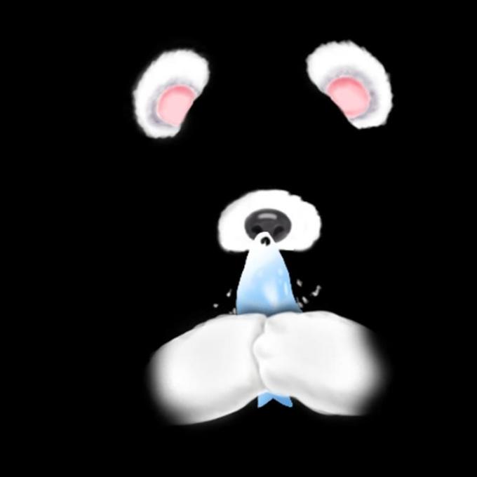 bear-02 png 24fps