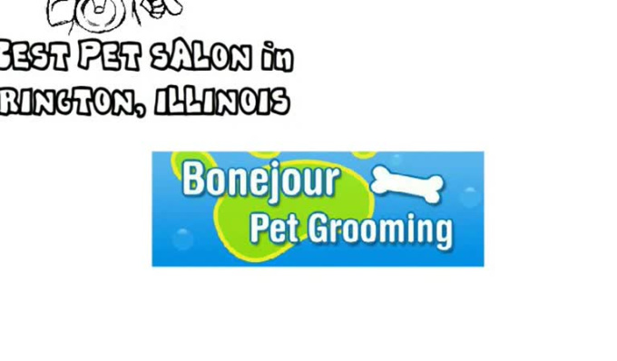 REVISED_With_Music_-_BonejourPetGrooming