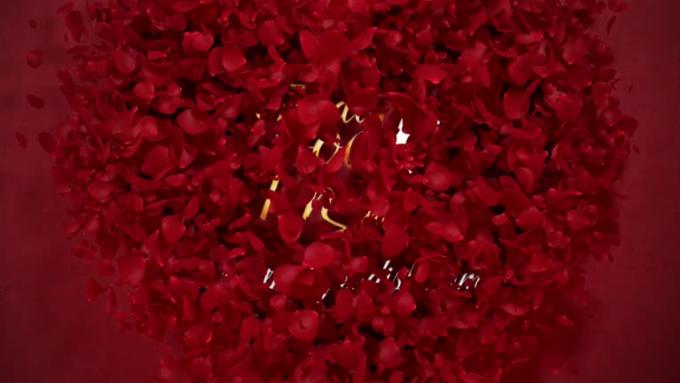 heart_flower_RED render_1