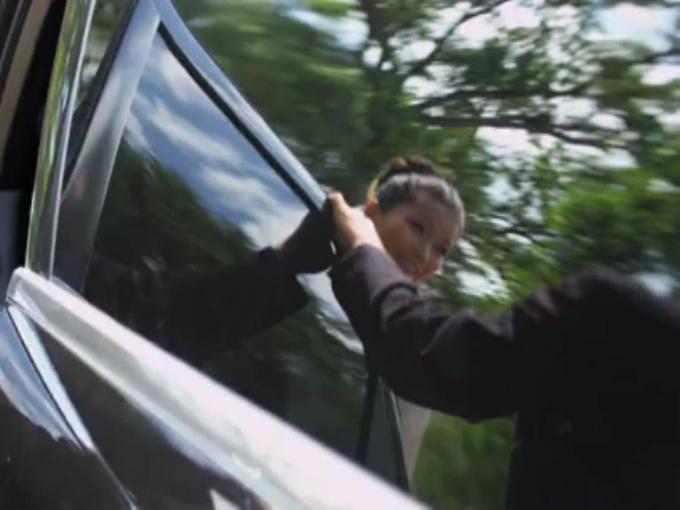 Royal Coachman Video 2
