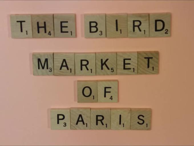 Birds_Of_ParisFreeGig