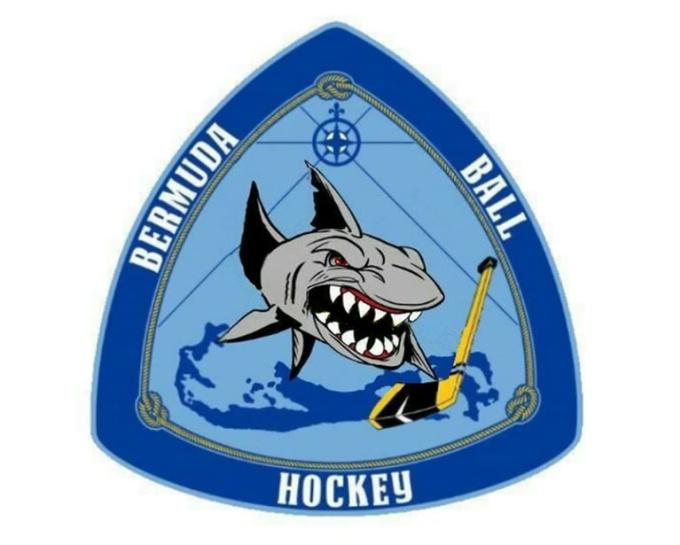 hockey shark MP4