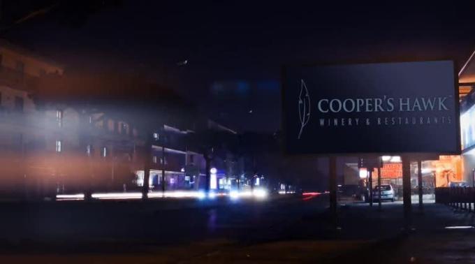 Final_CoopersHawk