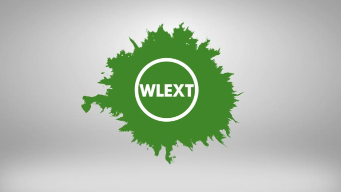 WLEXT_Logo Reveal