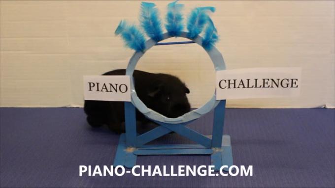 pianochallenge