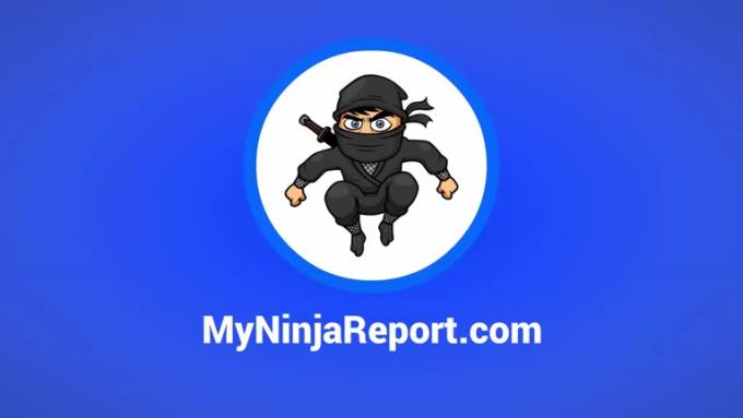 ninja-report