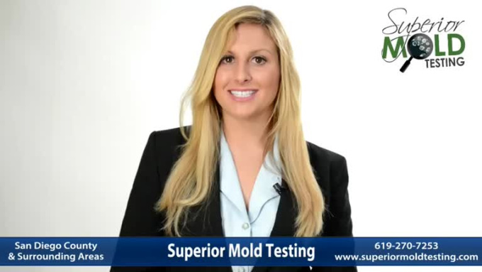 Mold Specialists Video