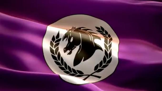 Flag Waving Video