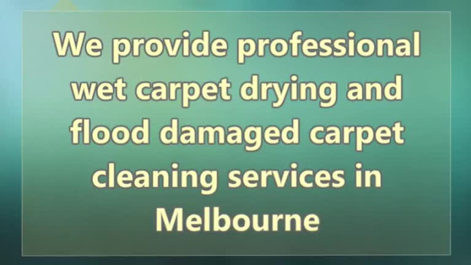 Professional-wet-carpet-drying