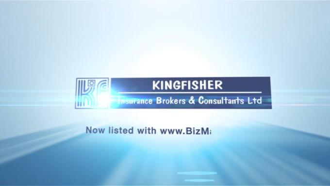 kingfisher new