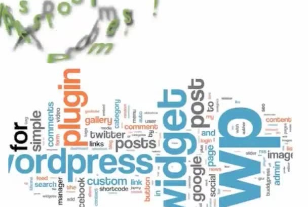 fix your Wordpress problem asap