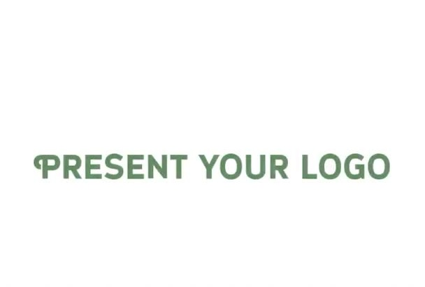 make your logo INTRO