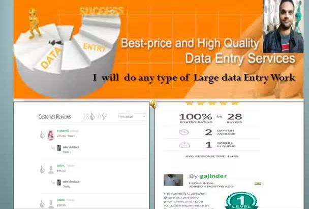 do large data Entry work