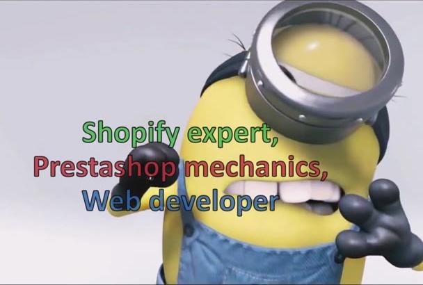 develop Eye Catching Shopify Store
