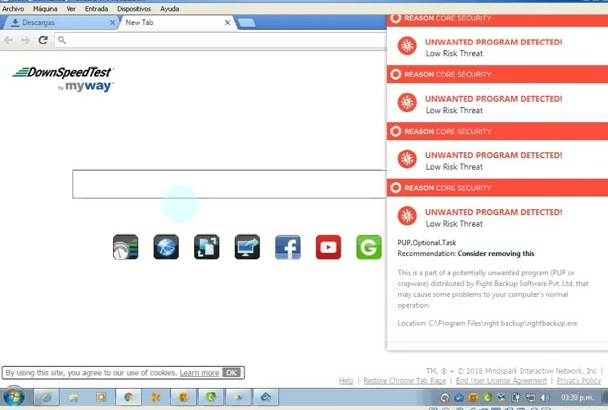 remove viruses and ads of your Pc PROFESSIONALLY