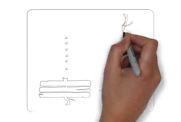 create a lovely Christmas Whiteboard Animation