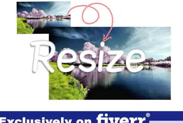professionally resize, crop and resize or stretch any photo, banner, image