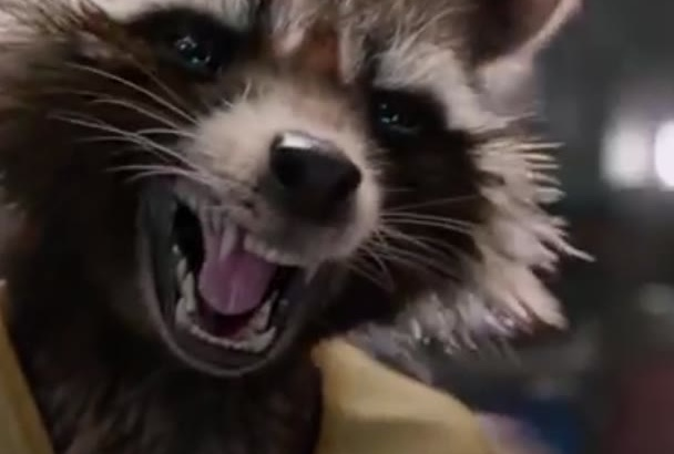 record Rocket Raccoon and Groot birthday wishes