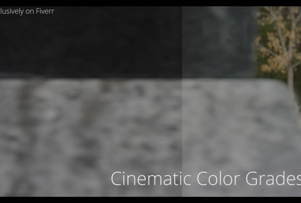 professionally color grade your video