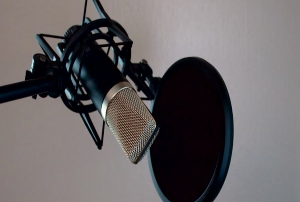 record a voice over narration of a childrens book