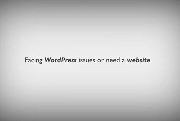 fix issues and wordpress errors