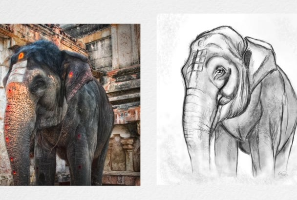 turn your photo or idea into a sketch style illustration