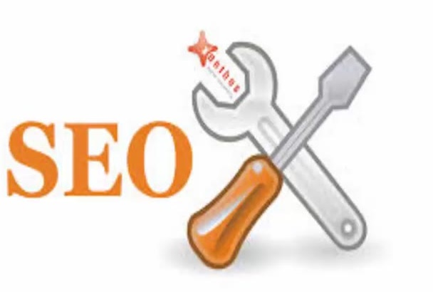 do a full SEO audit and plan of your site
