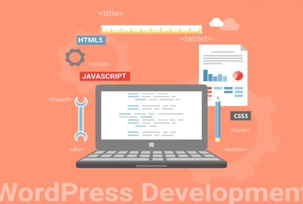 do Wordpress Plugin,widget or fix any problem or custom work