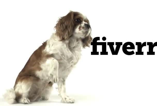 make beautiful logo reveal with dog