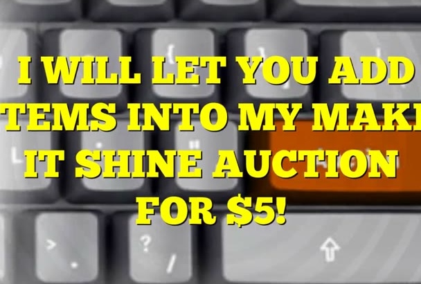let you add items into my AUCTION
