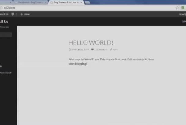 teach You WordPress Tutorial Step By Step